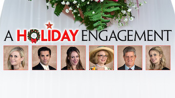 A Holiday Engagement (2011)