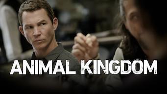 Animal Kingdom (2018)