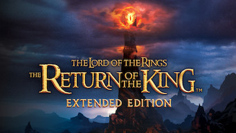 The Lord of the Rings: The Return of the King: Extended Edition (2003)